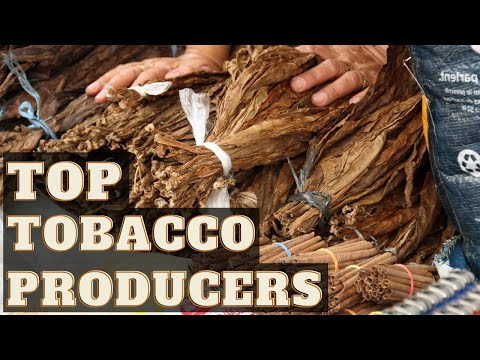 Top Tobacco Producers (1961 - 2018)