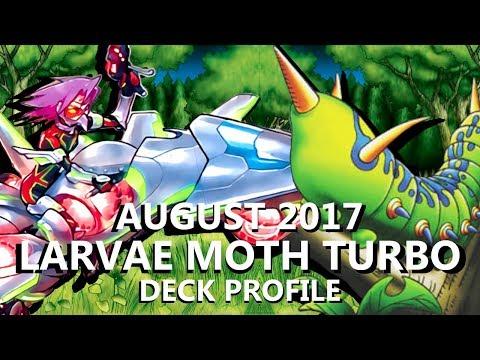 Yu-Gi-Oh! Larvae Moth Turbo Deck Profile - August 2017
