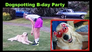 Dogspotting Funny Dogs - Dog on Our Family Birthday party - Pes na narozeninové oslavě