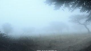 The Best Pessimist – The Half-World [Full Album]
