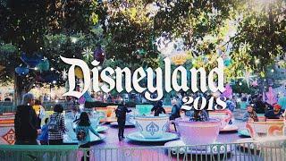 Disneyland 2018 Edit || Nathan Naiker