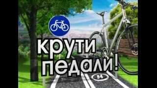 Крути педали! / как похудеть на велосипеде