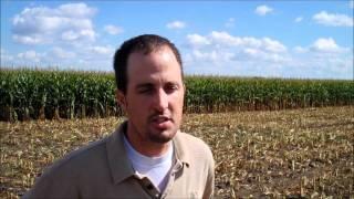 Silage Harevst 2011 - Triple K Farms