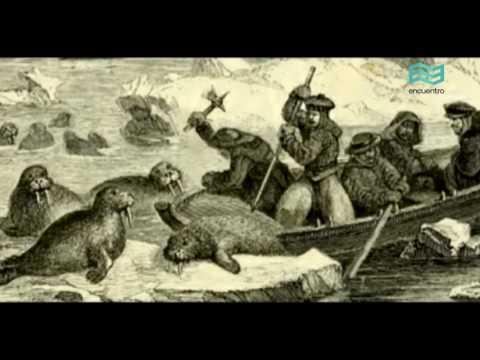 Isla de los Estados: Naufragios (capítulo completo) - Canal Encuentro