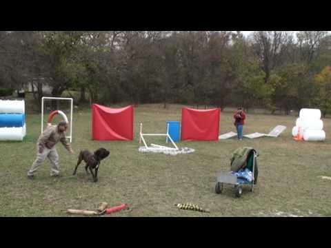 Fila Tex, Dog Owner Brent Baker 2.mpg