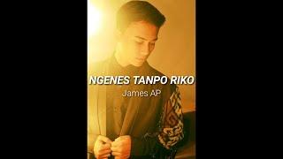 Download lagu James AP Ngenes Tanpo Riko MP3