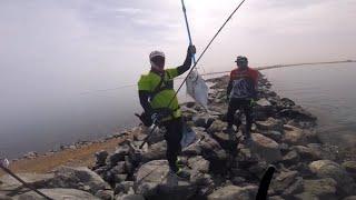 Rock Fishing with DNA Anglers Dubai
