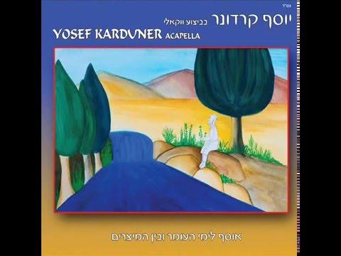 יוסף קרדונר - שיר למעלות, גרסה ווקאלית לימי העומר ובין המצרים