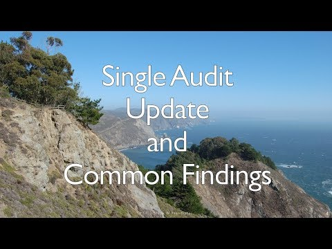 Single Audit Update And Common Findings 2017