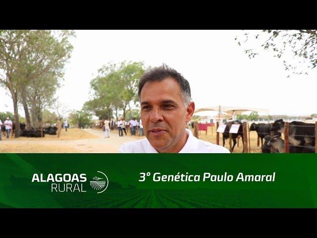 3° Genética Paulo Amaral fatura mais de 560 mil reais