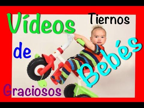 videos divertido /Vídeos De Bebes Chistosos 2019 ,Bebes & Niños Divertidos