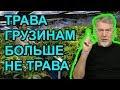 Марихуана и свобода Артемий Троицкий mp3