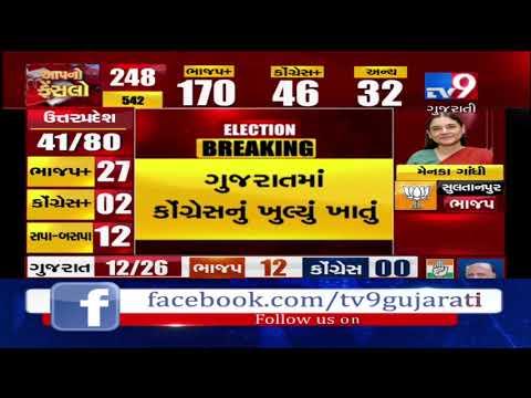 Congress candidate Paresh Dhanani leading on Amreli seat- Tv9