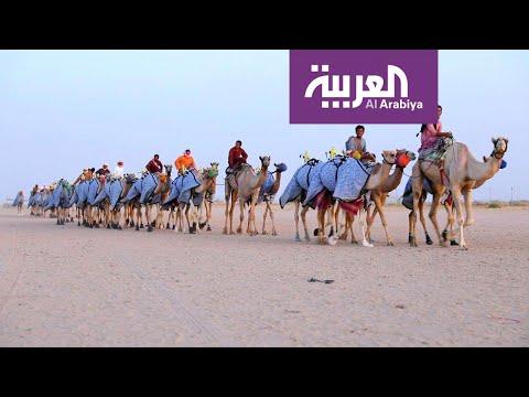 صباح العربية | مهرجان ولي العهد للهجن يجذب آلاف الزوار في الطائف  - نشر قبل 4 ساعة