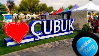 Çubuk Turşu Festivali 2019 VLOG