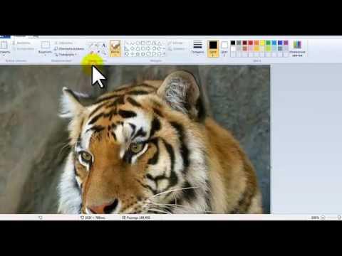 Как переделать картинку в jpg