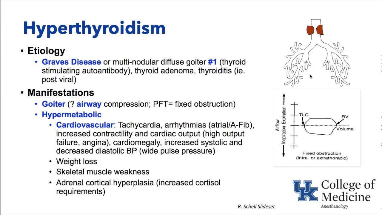 Thyroid And Parathyroid Disorders And Anesthesia Dr Schell Youtube