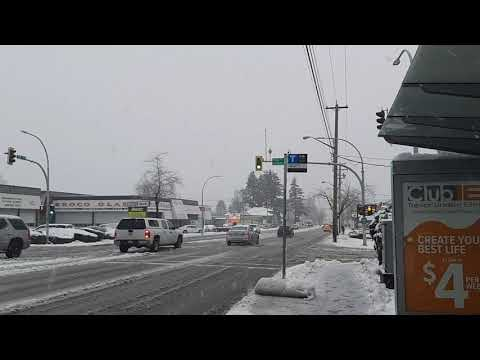 Snow In Surrey BC January 10 2020