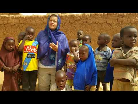 The Rapid Access Expansion Programme in Niger