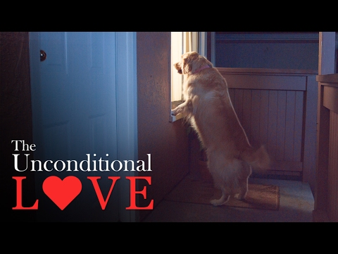 The Unconditional Love