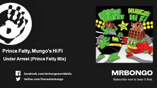 Prince Fatty, Mungo's Hi Fi - Under Arrest - Prince Fatty Mix - feat. Prince Fatty mp3