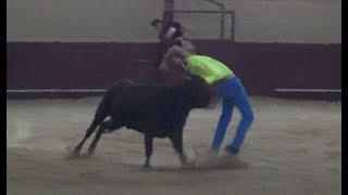 Capea con un novillo y una vaca en Valtaja 2020