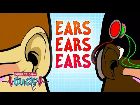 Ears Ears Ears! | Worst Ear Injuries | Operation Ouch | Science for Kids