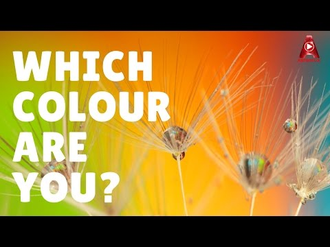✔ Which Colour Are You? | Personality Test | IQ Test | Colour Test
