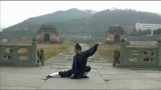 Wudang Five Animals Qi Gong (武当五行气功)