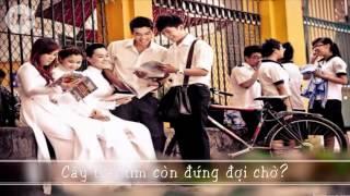 Hát Về Mái Trường   Tiên Cookie  w  Lyrics HD    YouTube