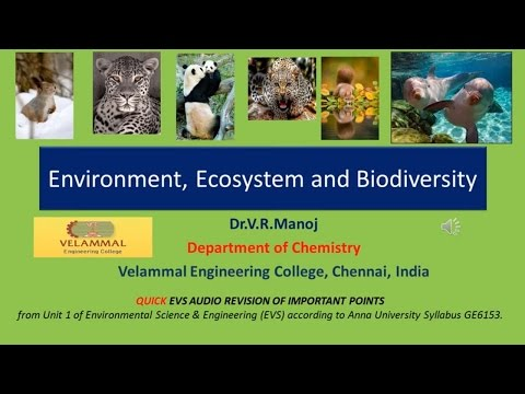 the ecosystems at risk environmental sciences essay Online environmental science degree environmental toxicologists study the effects of toxic chemicals on organisms in their natural environments, as well as the ecosystems they belong to these firms also help communicate information about chemical risks and regulations to the public.