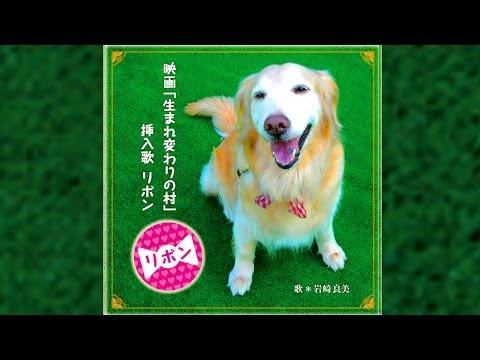 """生まれ変わりの村 挿入歌 岩崎良美リボン犬の生まれ変わりを歌い上げた曲Yoshimi Iwasaki """"REBORN"""" 実際にあった犬の生まれ変わりを歌っています"""