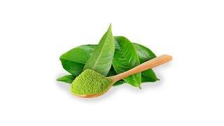 Grüner Tee | Matcha Test