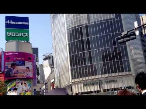 Tokyo Shibuya Scramble Traffic Court
