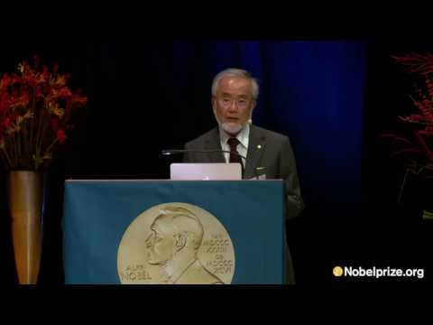 Nobel lecture: Yoshinori Ohsumi, Nobel Laureate in Physiology or Medicine 2016