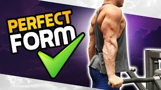 How To: Chest OR Triceps Dip! 3 GOLDEN RULES! (MADE BETTER!)