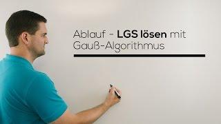 Gauß-Algorithmus, Lineares Gleichungssystem lösen, einfach, schnell erklärt | Mathe by Daniel Jung