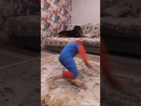 Шапоренко Илья
