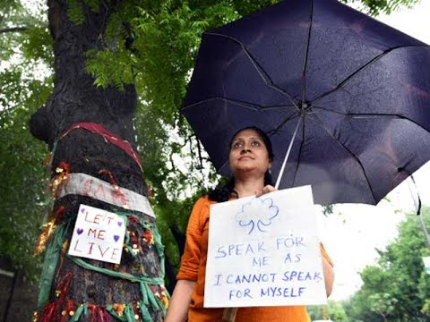 Delhi: Citizens protest against axing of trees to widen roads