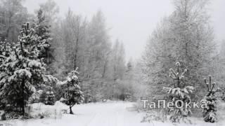 снегопад , дорога в лесу , футаж