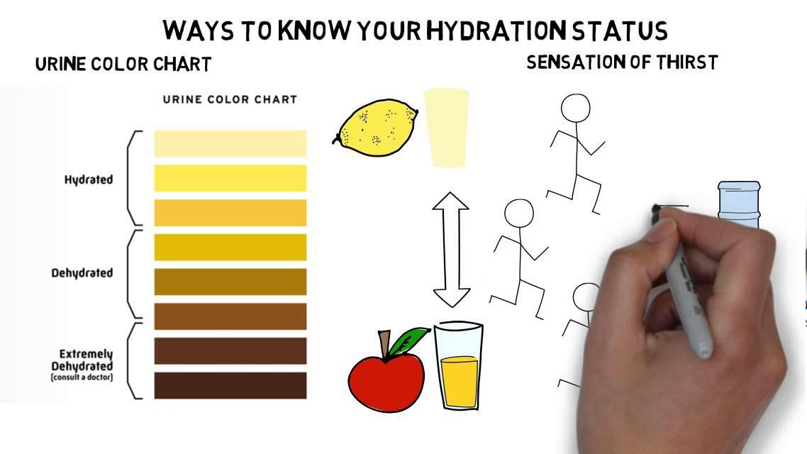 Hydration | Korey Stringer Institute