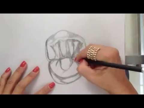 primer premolar superior cara oclusal - YouTube