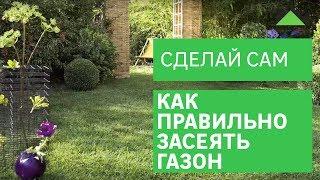 видео Подготовка почвы для газона