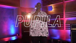 Péricles - Pupila