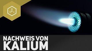 Nachweis von Kalium als Kaliumperchlorat l TheSimpleChemics