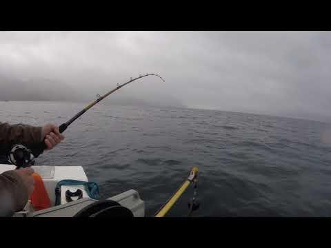 2018 Halibut Fishing Ketchikan