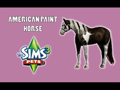 Creating a Paint Horse! - The Sims 3