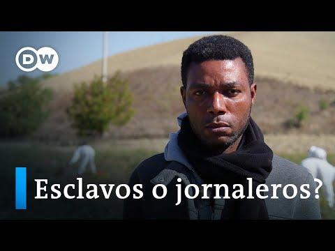 ¿Esclavitud en Italia?   DW Documental