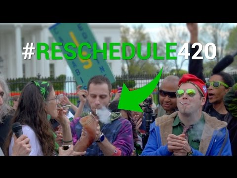 Protesters Smoke Weed Outside of the White House