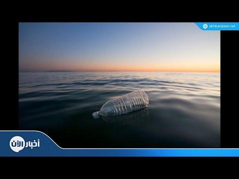 مخلفات البلاستيك تهدد وجبة السمك البريطانية الشهيرة  - نشر قبل 3 ساعة